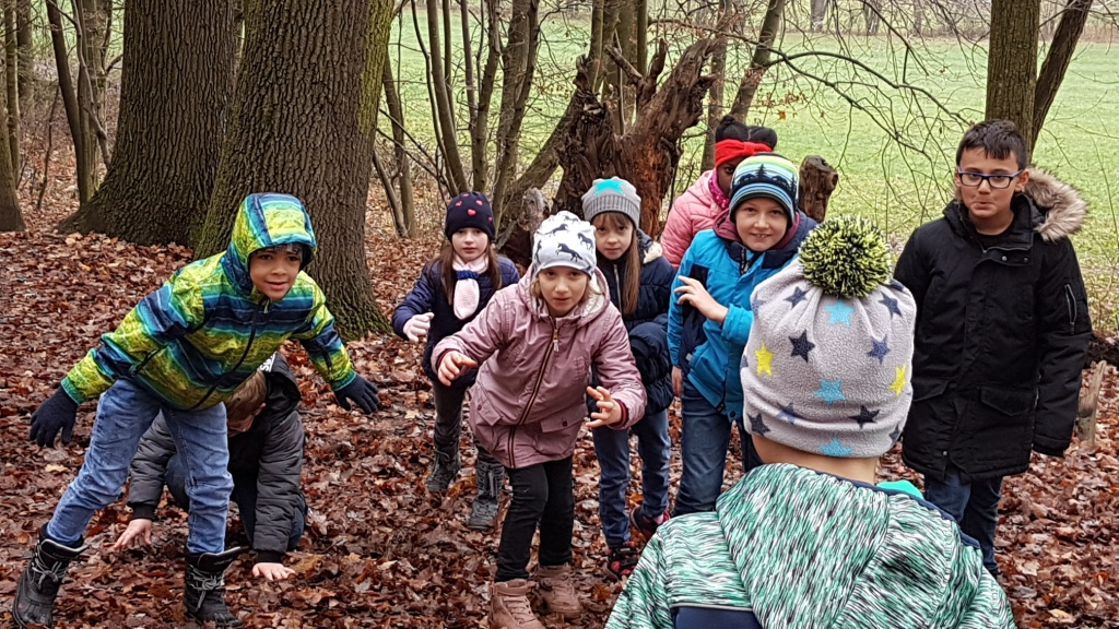 Winter-Waldtag 3b